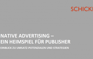 Einblick Native Advertising 2019